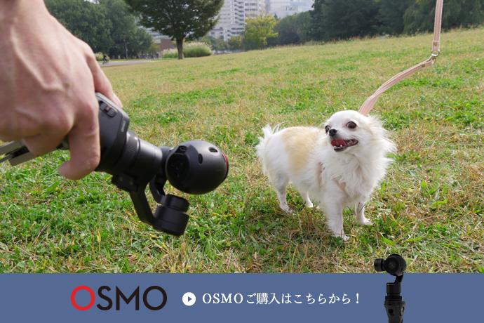 画像:OSMO商品ページはこちらから