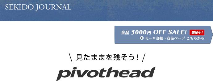 画像:pivotheadについて